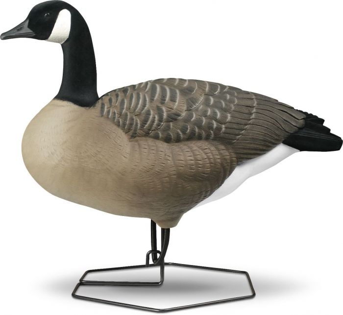 Rogue Series Full Body Canada Goose Decoys