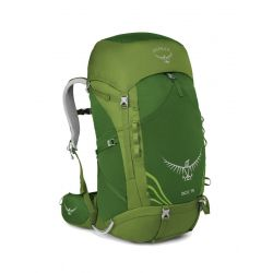 Osprey Kid's Ace 75 Backpack - Ivy Green