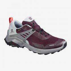 Women's X Raise GTX Hiker - Wine/Quarry/Cayenne