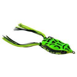 Bronzeye Frog65