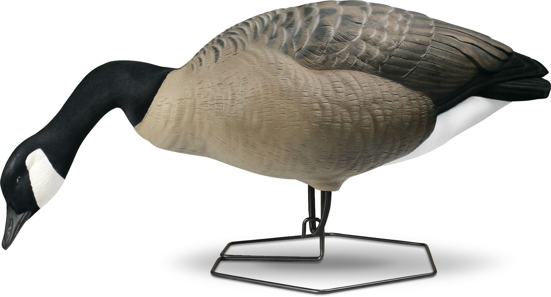Rogue Series Full Body Canada Goose Decoys - Feeder Pack