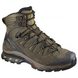 Men's Quest 4D 3 GTX Hiker